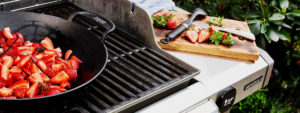 Accessori Barbecue Weber